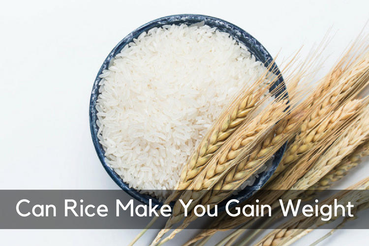 Can_Rice_Make_You_Gain_Weight