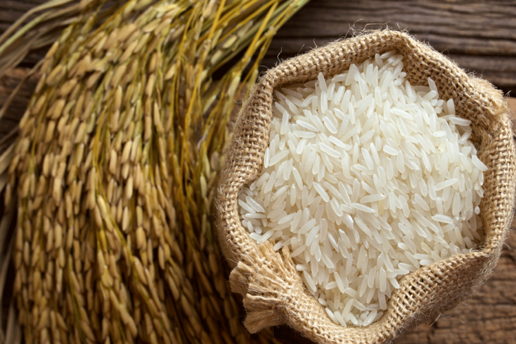 Does White Rice Contain Protein?